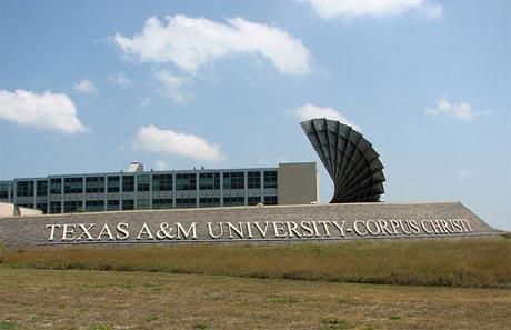 Đại học Texas A & M Corpus Christi