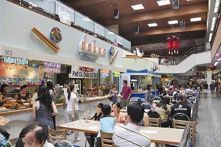 Người Việt kinh doanh, buôn bán tại Mỹ