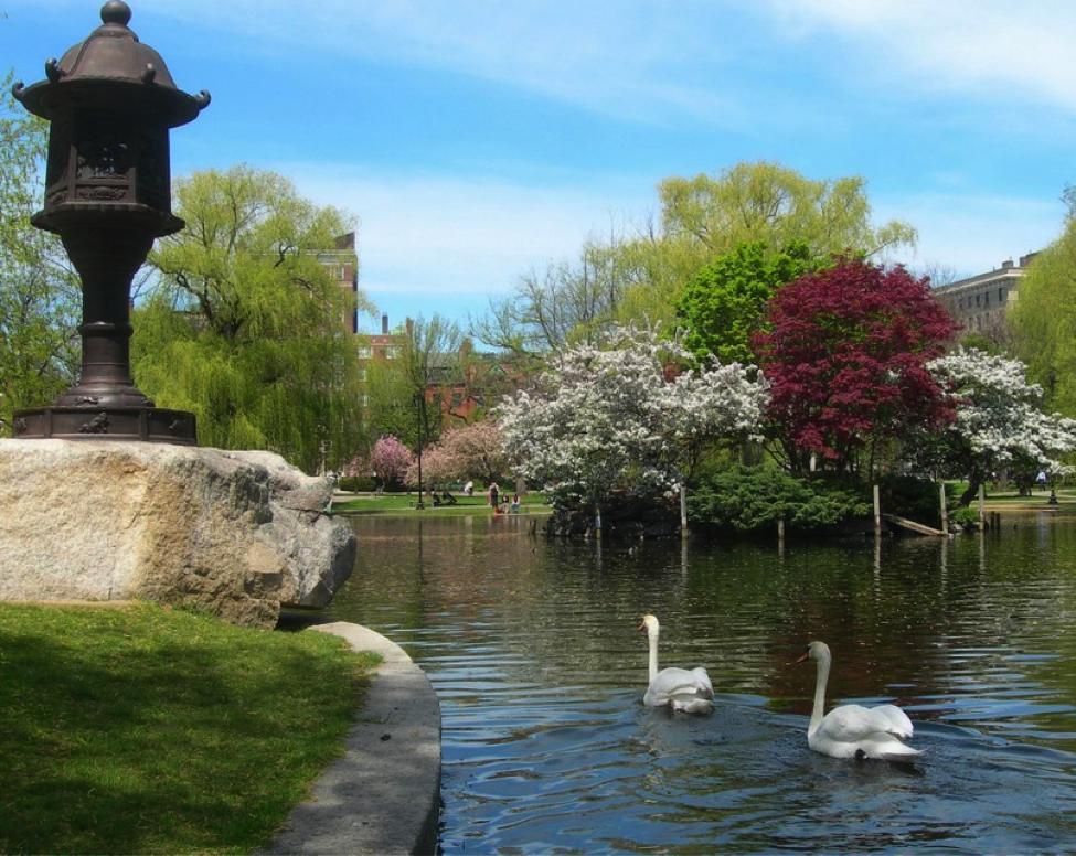 Boston bình dị của tôi - Một Boston phong lưu, quyến rũ…