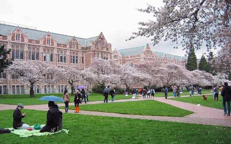 Đại học Washington. Là một trong những trường đại học lâu đời nhất của Mỹ trên bờ biển Thái Bình Dương trường bao gồm ba trường: Seattle, Bothell và Tacoma