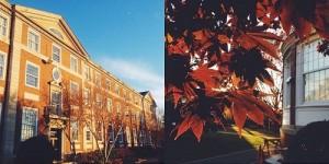 Trường Đại học Adelphi là trường lâu đời, có khu học xá đẹp, gần trung tâm.