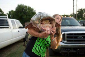 Lễ hội bắt cá bằng tay